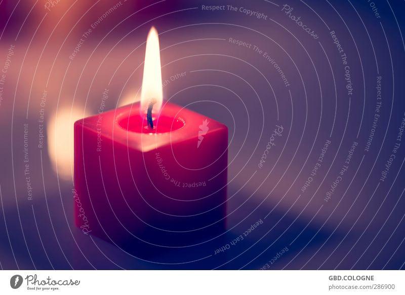 Das ist der Burner! Weihnachten & Advent Geburtstag Trauerfeier Beerdigung Kerze heiß hell Wärme violett rot Gefühle Stimmung Wachs Kerzendocht Flamme Quadrat
