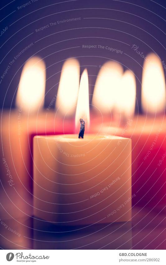 Stromausfall... Weihnachten & Advent Geburtstag Trauerfeier Beerdigung Kerze heiß hell violett orange rot Gefühle Stimmung Traurigkeit Wachs Kerzendocht Flamme