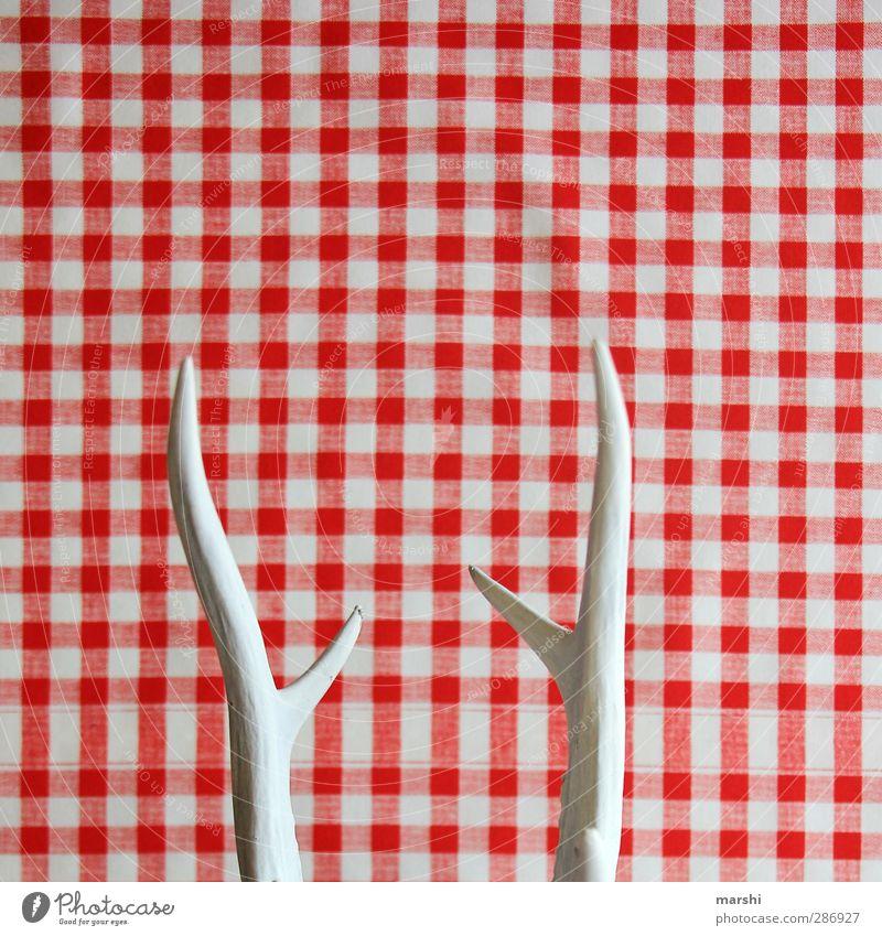 gehörnt Wohnung Innenarchitektur Dekoration & Verzierung rot weiß Horn bockgeweih Spitze kariert abstrakt Jagd jagdtrophäge retro Farbfoto Innenaufnahme