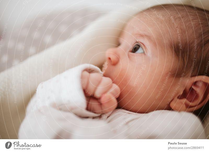 Baby beobachtet Mutter Lifestyle Mensch Kind 1 0-12 Monate beobachten entdecken liegen Blick Zusammensein natürlich Neugier niedlich Wärme Gefühle Sicherheit