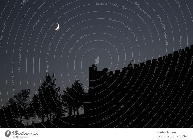 Spukschloss Ferien & Urlaub & Reisen Abenteuer Sommerurlaub Natur Landschaft Himmel Nachthimmel Mond Wetter Park Wald Dorf Traumhaus Burg oder Schloss Ruine