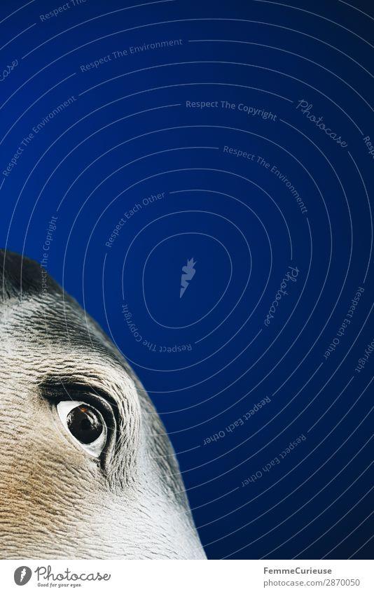 Scapegoat - person masked as goat Tier Konflikt & Streit Sündenbock Auge blau schuldig anschuldigen Beschuldigter Bock Maske Karneval Farbfoto Studioaufnahme