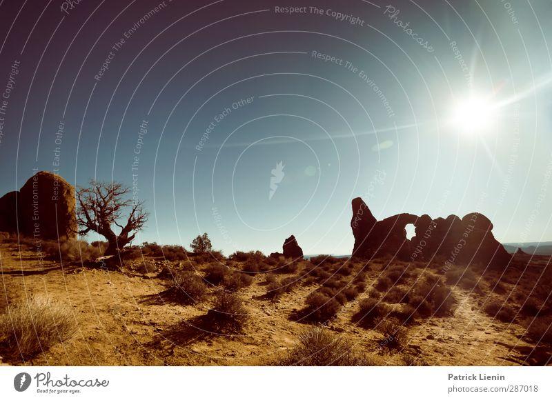 Red Rock Wonderland Natur Ferien & Urlaub & Reisen Sommer Pflanze ruhig Landschaft Erholung Ferne Umwelt Freiheit Sand Luft Felsen Zufriedenheit Tourismus