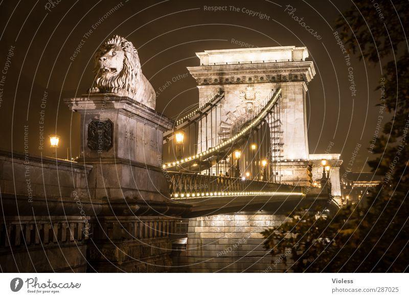 sauwetter in budapest Ferien & Urlaub & Reisen alt dunkel Architektur Gebäude leuchten Brücke Denkmal Statue Wahrzeichen Sehenswürdigkeit Hauptstadt Bogen