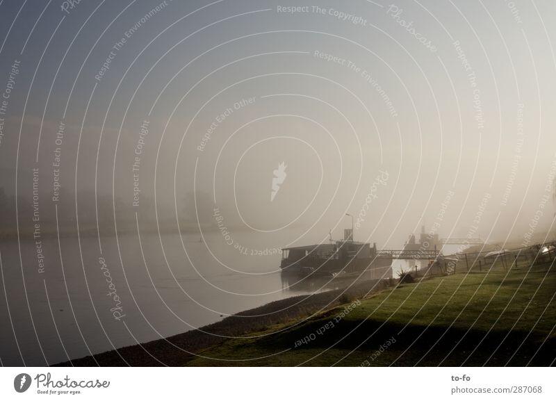 Elbe am Morgen Umwelt Landschaft Wasser Himmel Herbst Nebel Flussufer Binnenschifffahrt Fähre Wasserfahrzeug Schiffswerft Stimmung Morgennebel Dunst Farbfoto