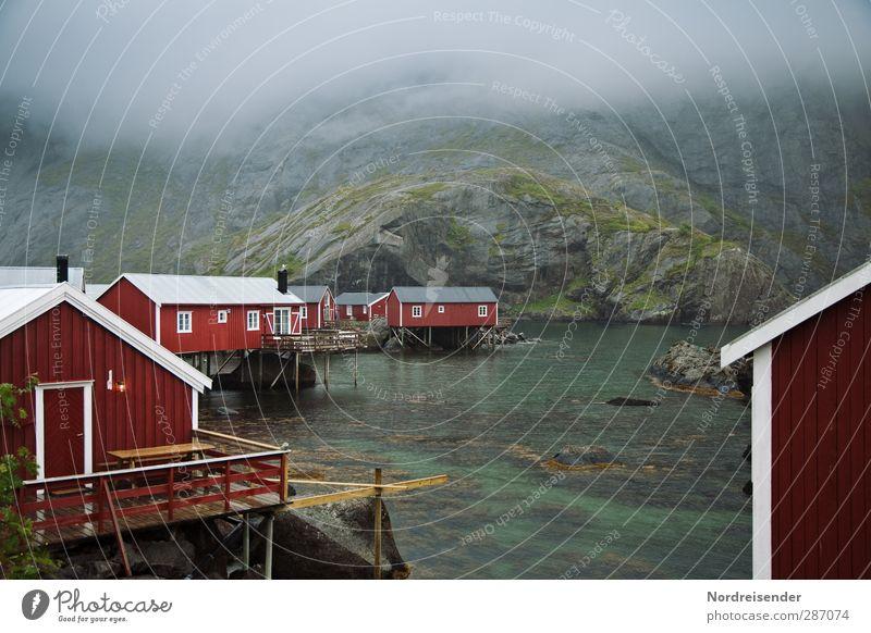 Regen Lifestyle Sinnesorgane ruhig Ferien & Urlaub & Reisen Tourismus Meer Natur Urelemente Klima schlechtes Wetter Nebel Küste Bucht Fjord Fischerdorf