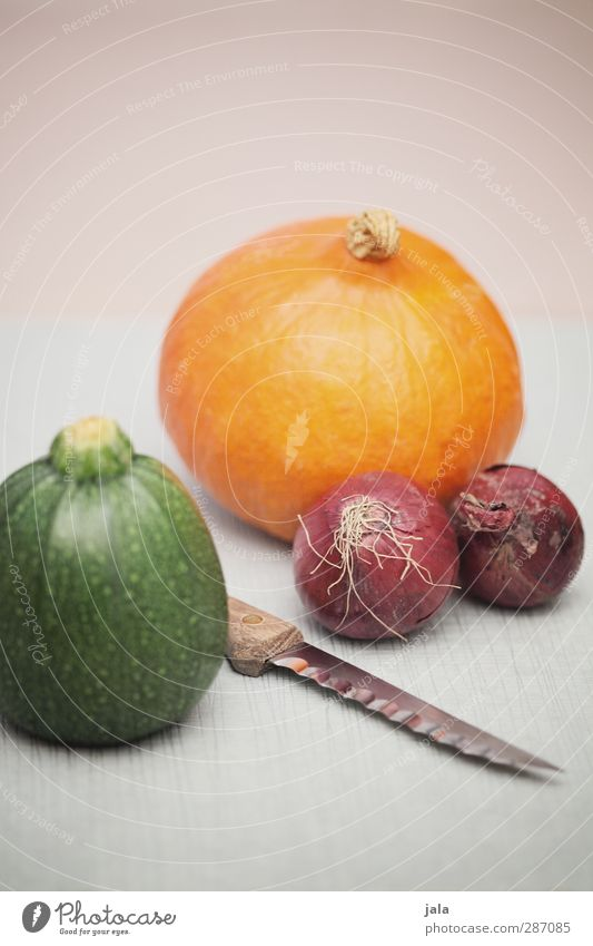 herbstgemüse Lebensmittel Gemüse Zucchini Zwiebel Kürbis Ernährung Bioprodukte Vegetarische Ernährung Messer frisch Gesundheit natürlich wintergemüse Kürbiszeit