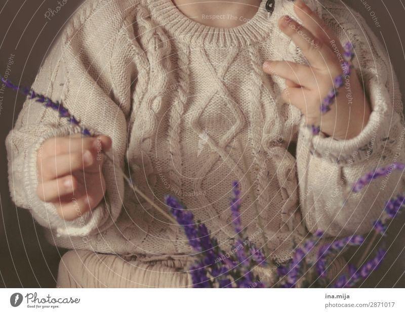Lavendelduft kitzelt die Nase Mensch Kind Kleinkind Mädchen Junge Kindheit Leben 1 1-3 Jahre 3-8 Jahre Mode Bekleidung Pullover Strickmuster Strickpullover Duft