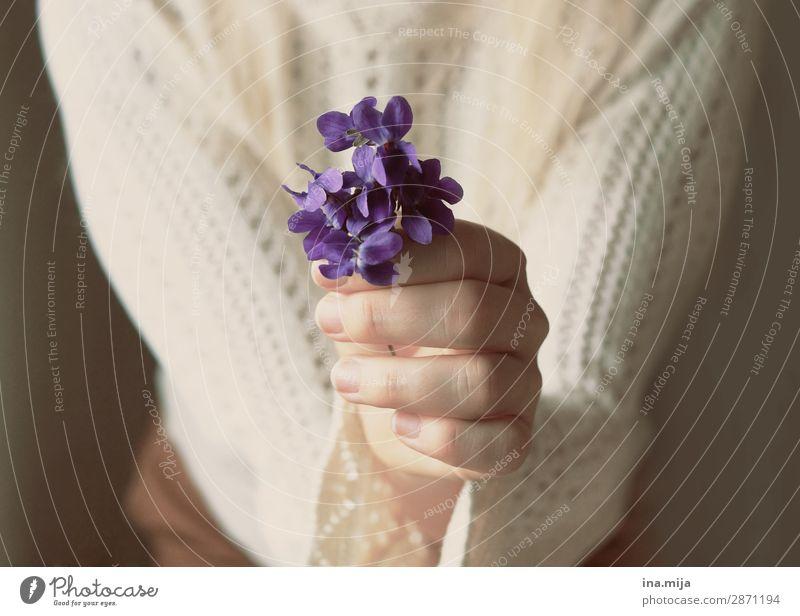 Für dich! Mensch feminin Junge Frau Jugendliche Erwachsene Mutter Leben Pflanze Blume Blüte Vergißmeinnicht violett Geschenk Muttertag Farbfoto