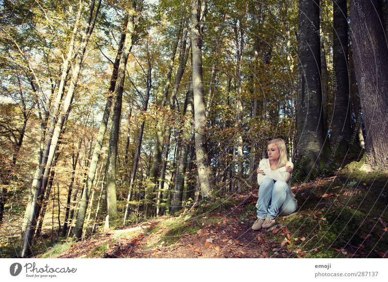 da war's noch bunt feminin Junge Frau Jugendliche 1 Mensch 18-30 Jahre Erwachsene Umwelt Wald einzigartig einzeln Einsamkeit Erholung Erholungsgebiet Rückzug