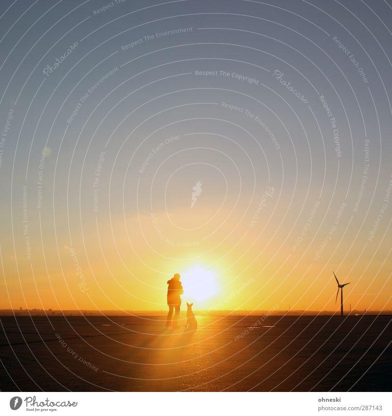 Herr und Hund Freizeit & Hobby Ausflug Ferne Freiheit Mensch 1 Himmel Sonne Sonnenaufgang Sonnenuntergang Sonnenlicht Schönes Wetter Tier Windrad Warmherzigkeit