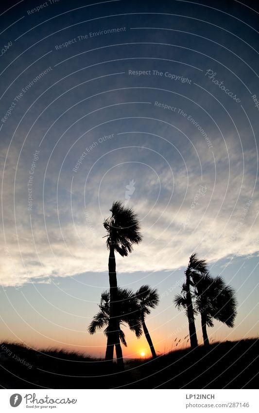 Stormy-High5. XXVI Ferien & Urlaub & Reisen Tourismus Abenteuer Ferne Sommerurlaub Sonne Strand Meer Landschaft Tier Sonnenaufgang Sonnenuntergang Klima