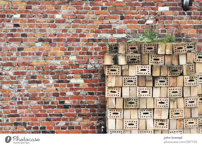 Niemand hat die Absicht, eine Mauer zu errichten alt Stadt Einsamkeit Haus Wand Architektur Stein Fassade authentisch Ordnung trist Wandel & Veränderung retro