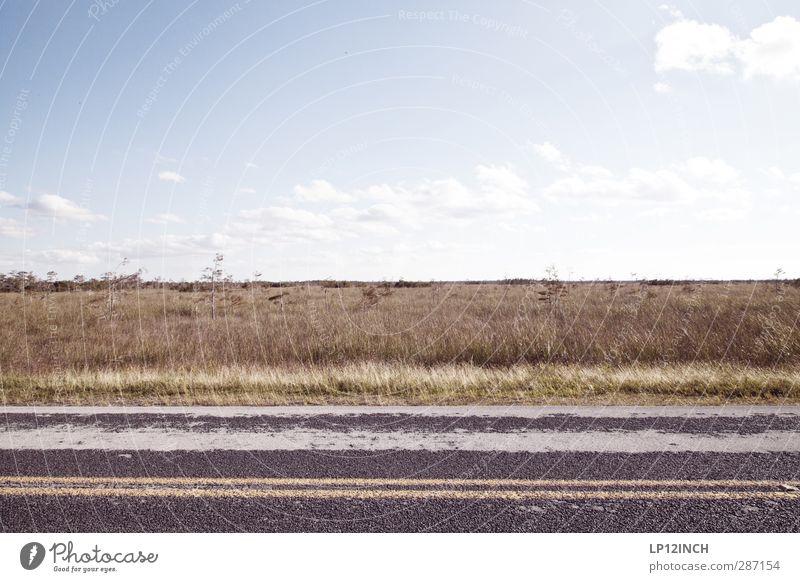 Florida State Road 823. XXVII Natur Ferien & Urlaub & Reisen Pflanze Tier ruhig Landschaft Ferne Umwelt Straße Gras Wege & Pfade Schilder & Markierungen wandern Verkehr Tourismus Schönes Wetter