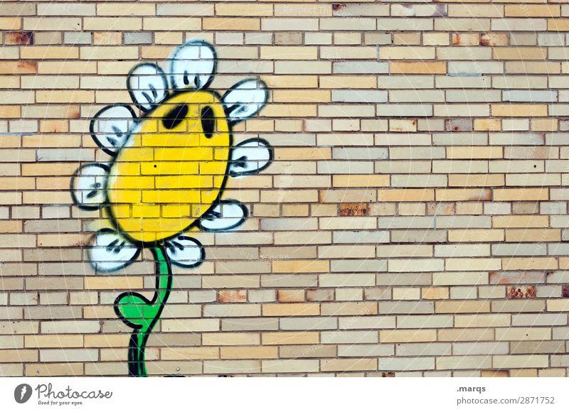 Sonnenblume Natur Blume Graffiti Wand lustig Mauer Klima