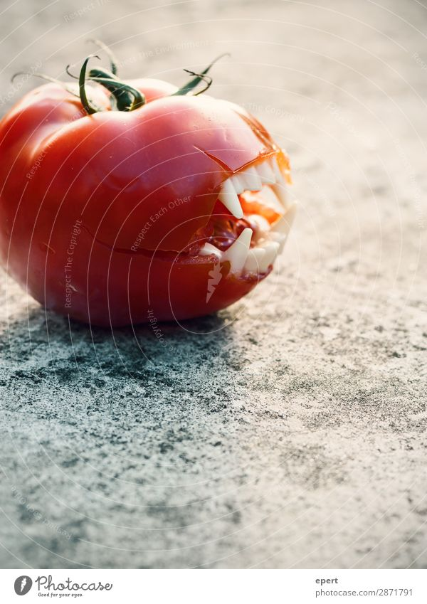 Fleischtomate Lebensmittel Gemüse fangen Fressen Jagd Aggression bedrohlich saftig verrückt wild gefräßig bizarr skurril Zähne Gebiss Vampir Tomate Blut