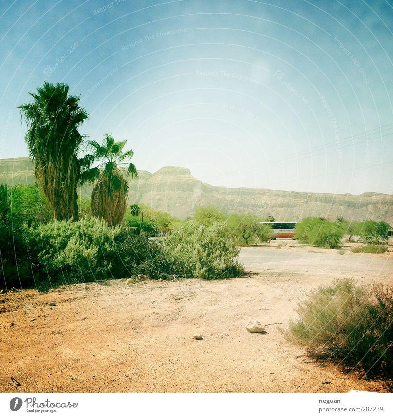 Natur blau Ferien & Urlaub & Reisen grün Sommer Pflanze Baum Sonne Freude Landschaft gelb Umwelt Berge u. Gebirge Sand Erde authentisch