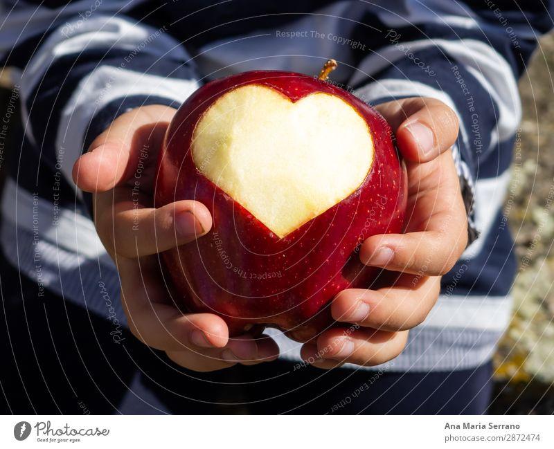 Ein Kind mit einem roten Apfel in der Hand. Frucht Ernährung Bioprodukte Diät Lifestyle Gesundheitswesen Gesunde Ernährung Übergewicht Wellness Herz Fitness