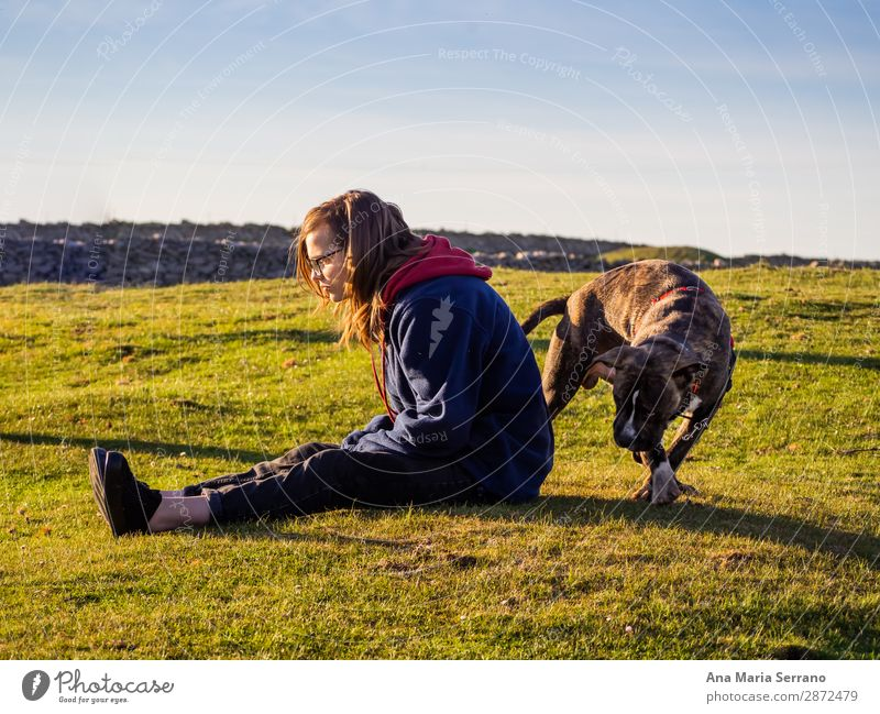 Eine Teenagerfrau spielt mit einem jungen Hund. Spielen Freiheit Junge Frau Jugendliche Erwachsene Freundschaft Natur Landschaft Haustier Tierjunges Liebe