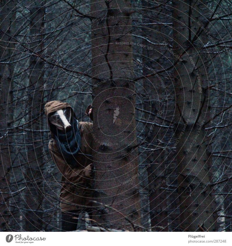 Auf der Flucht Mensch Frau Jugendliche grün Wald Erwachsene dunkel feminin 18-30 Jahre stehen Maske verstecken Tanne Jagd Schal