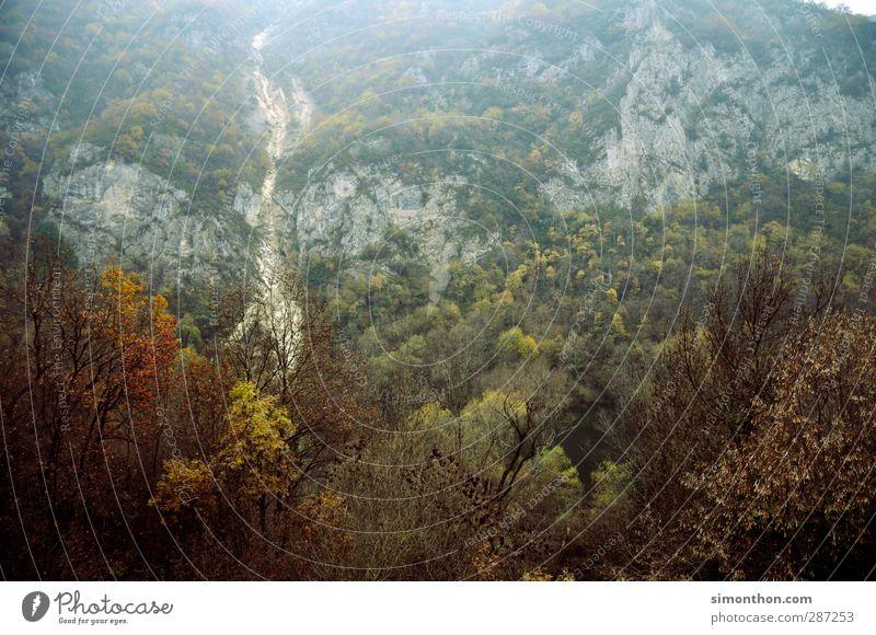 Reisen Ferien & Urlaub & Reisen Ferne Berge u. Gebirge Umwelt Natur Landschaft Herbst Klima Nebel Baum Wald Urwald Hügel Felsen Gipfel Schlucht Fjord Expedition