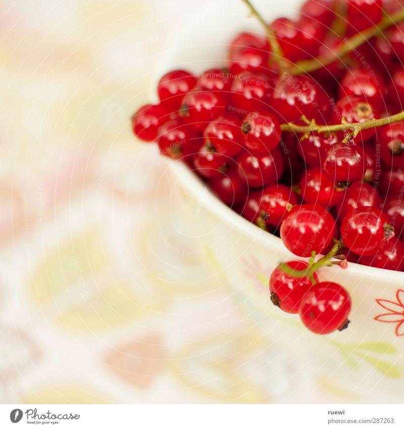 Johannisbeeren Lebensmittel Frucht Dessert Ernährung Mittagessen Abendessen Bioprodukte Vegetarische Ernährung Diät Fingerfood Geschirr Schalen & Schüsseln