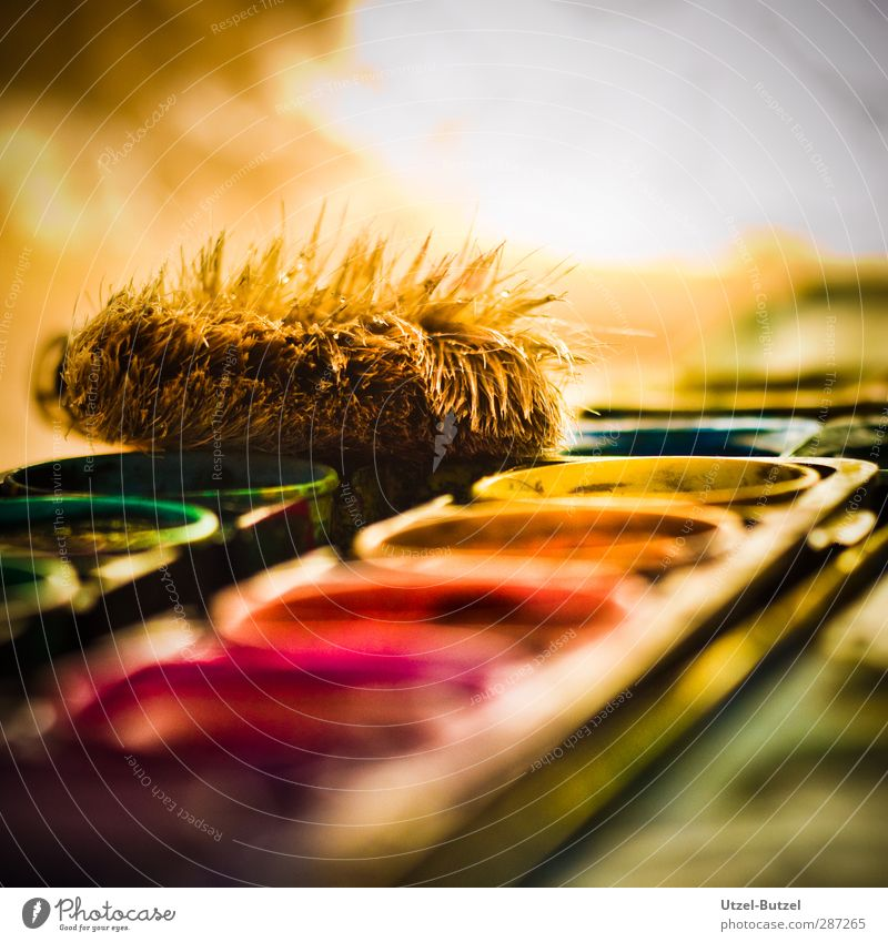 Farbkasten 2 Farbe Kunst Freizeit & Hobby Kreativität streichen Werkstatt zeichnen Künstler Pinsel Maler Kunsthandwerk Aquarell Kunstwerk Makroaufnahme