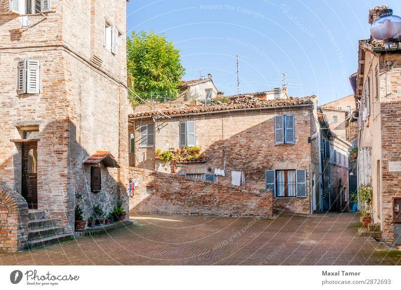Häuser in einer Straße von Urbino Ferien & Urlaub & Reisen Tourismus Sommer Haus Kultur Landschaft Baum Blume Stadt Gebäude Architektur Fassade Denkmal alt