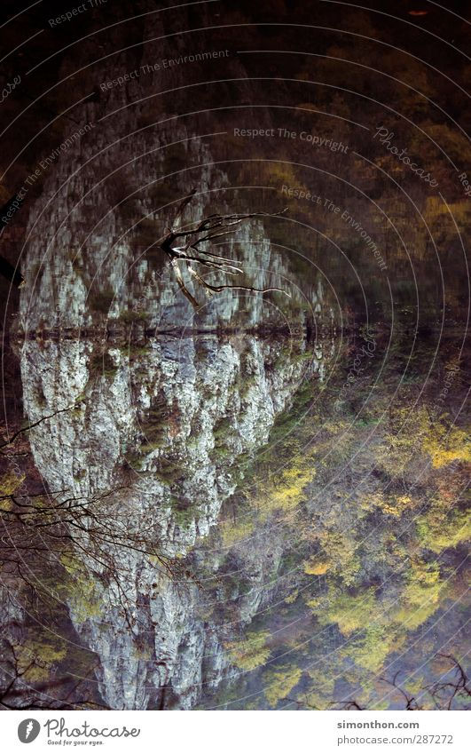 Natur Umwelt Landschaft Wasser Herbst Wald Berge u. Gebirge Schlucht Küste Seeufer Flussufer Fjord Teich Spiegel Spiegelbild Wasseroberfläche mazedonien skopje