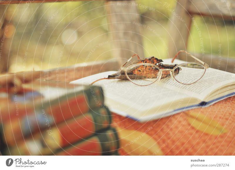 lesezeit ruhig Holz Glas Freizeit & Hobby Buch Papier Brille lesen Wohlgefühl