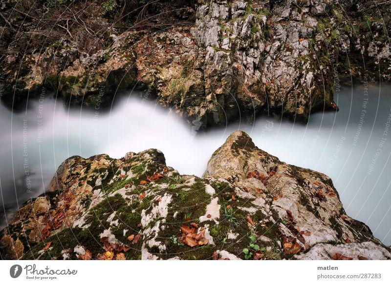 Happy birthday photocase Natur Wasser weiß Landschaft Felsen braun Fluss Flussufer Moos Schlucht
