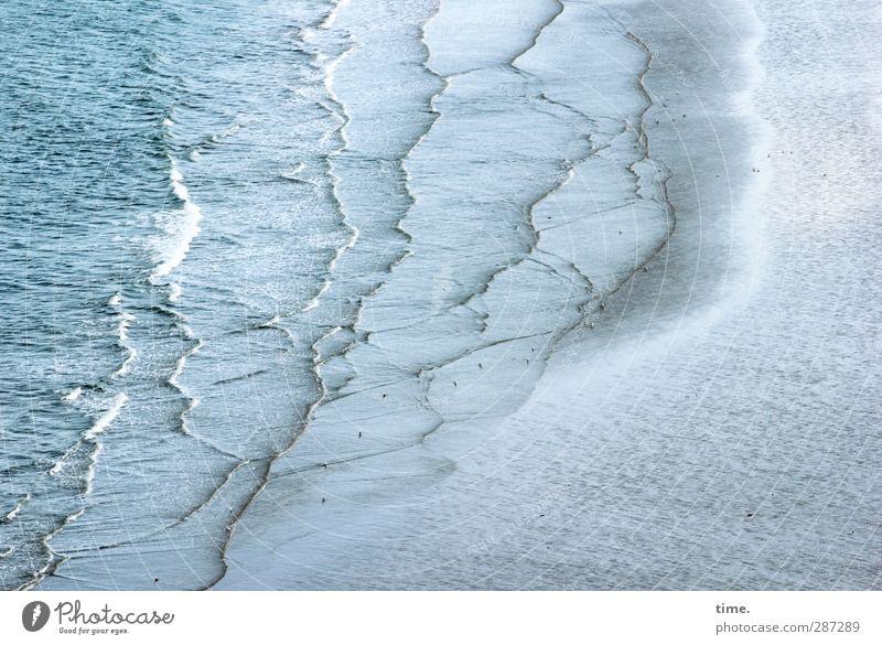 happy birthday, photocase | Lebenslinien - nur für euch :) Natur Wasser Meer Landschaft Bewegung Wege & Pfade Küste Sand Wellen Kraft Klima Wandel & Veränderung