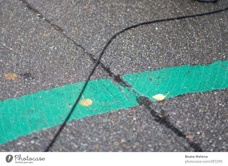 Happy Birthday, Photocase! | grüner Straßenkreuzer als Geschenk grün schwarz Straße Herbst grau Zusammensein Schilder & Markierungen Kommunizieren einzigartig Stahlkabel Verbindung Verkehrswege Straßenbelag Stadtzentrum Straßenkreuzung Fußgängerzone