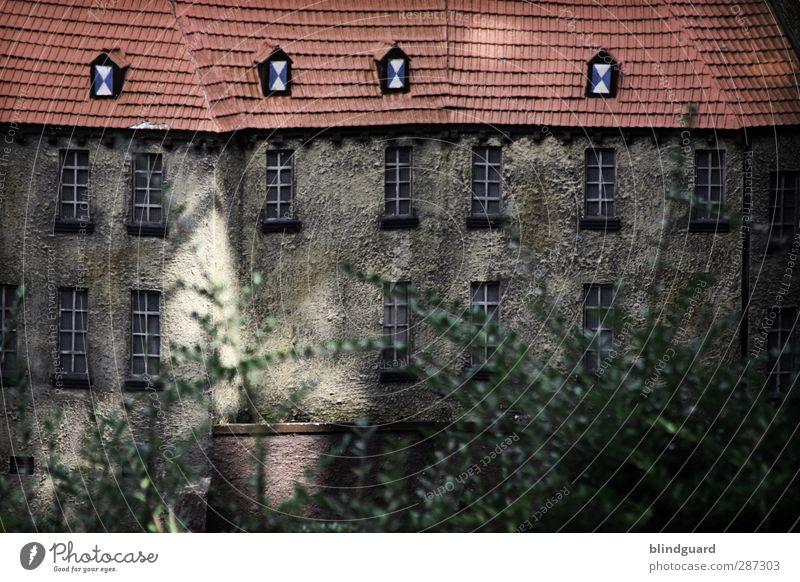 A Castle Full Of Rascals weiß rot Blatt ruhig schwarz Haus Fenster Wand Senior grau Mauer Gebäude Stein braun Wohnung Kraft