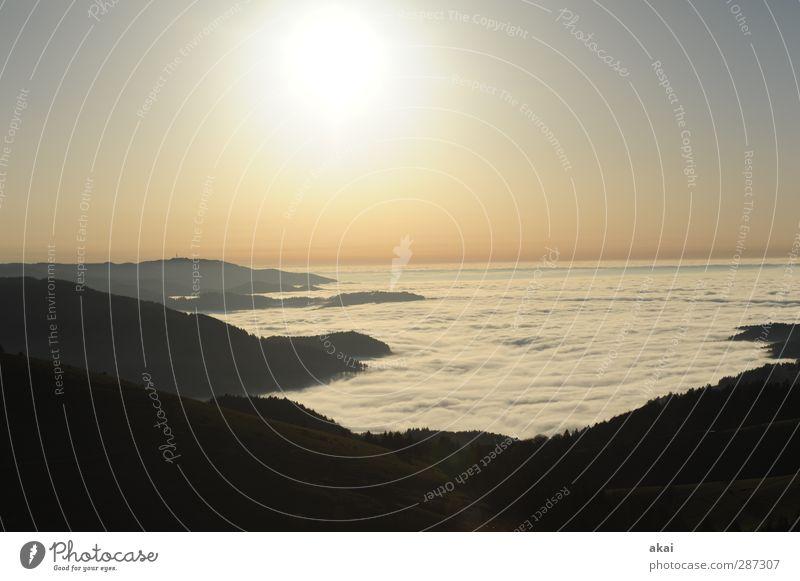 Happy Birthday,Photocase! Umwelt Natur Landschaft Himmel Wolken Sonne Sonnenaufgang Sonnenuntergang Nebel Wald Berge u. Gebirge blau rosa schwarz weiß Farbfoto