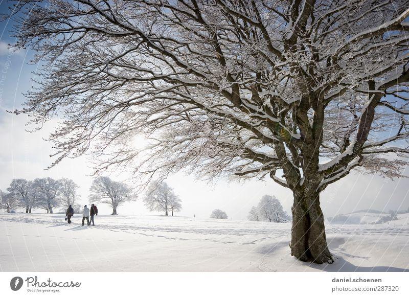 Morgen geht's los !!!!!! Mensch blau Ferien & Urlaub & Reisen weiß Baum Freude Winter Berge u. Gebirge Schnee hell Eis Klima wandern Tourismus Schönes Wetter