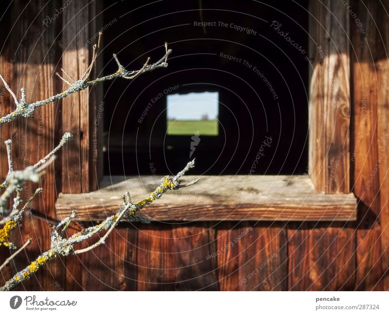 Happy Birthday Photocase | Durchblick Natur Pflanze Baum Erholung Landschaft ruhig Haus Fenster Wiese Stil Holz Lifestyle Design Perspektive Zukunft Ast