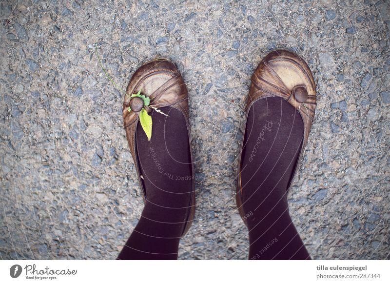 HAPPY BIRTHDAY PHOTOCASE! feminin Junge Frau Jugendliche Fuß 1 Mensch Schuhe Ballerina stehen retro Strumpfhose schwarz Blatt Asphalt Bodenbelag