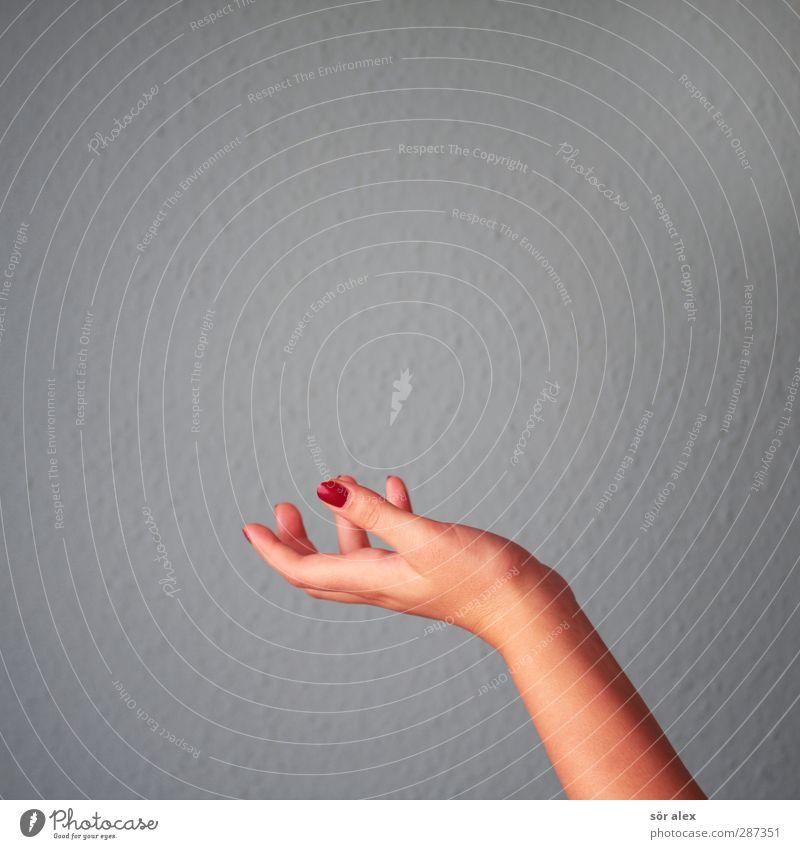 Happy birthday Photocase | Geschenk fehlt feminin Junge Frau Jugendliche Hand Finger Fingernagel grau rot Körperpflege Wellness Frauenhand Nagellack