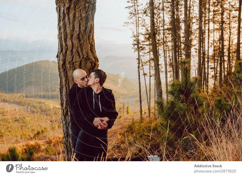 Lächelnde Männer, die sich am Baum im Wald auf einem Hügel umarmen. Homosexualität Paar Umarmen Liebe umarmend Tal malerisch Aussicht romantisch