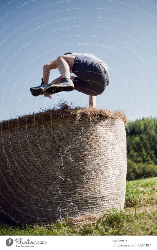 Und Hopp Mensch Natur Jugendliche Sommer Erwachsene Umwelt Wiese Leben Sport Junger Mann Wege & Pfade Freiheit springen 18-30 Jahre Gesundheit Energie