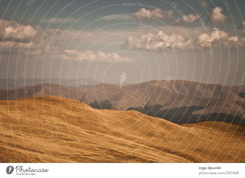 Fast in den Wolken... Umwelt Natur Landschaft Urelemente Himmel Sommer Wetter Schönes Wetter Hügel Berge u. Gebirge Gipfel Karpaten Rumänien Siebenbürgen