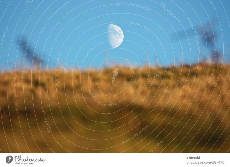 Star Trek Luft Himmel Wolkenloser Himmel Mond Gras Hügel Einsamkeit Ferne Zukunft Astronomie Astrologie Farbfoto Außenaufnahme Menschenleer Textfreiraum links