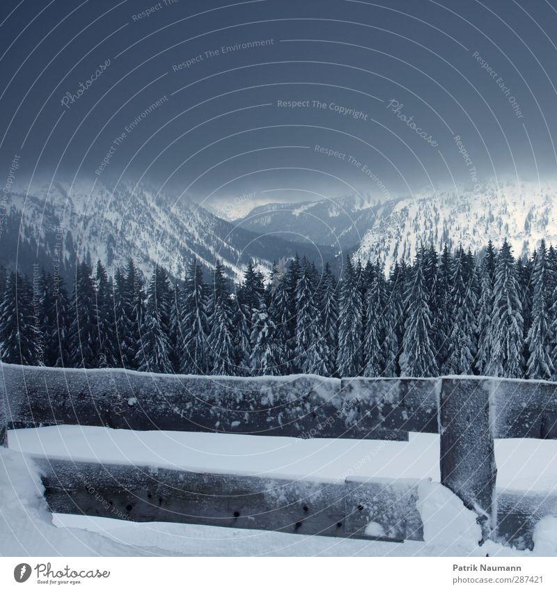 drei Drittel Natur Landschaft Wolken Gewitterwolken Winter Klimawandel schlechtes Wetter Nebel Eis Frost Schnee Schneefall Baum Tanne Wald Alpen