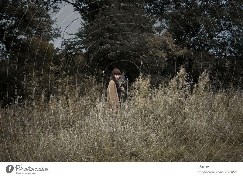 graue herbsttage Mensch Frau Natur Jugendliche grün Baum Erwachsene Junge Frau dunkel Wiese kalt Herbst feminin Gras Traurigkeit 18-30 Jahre
