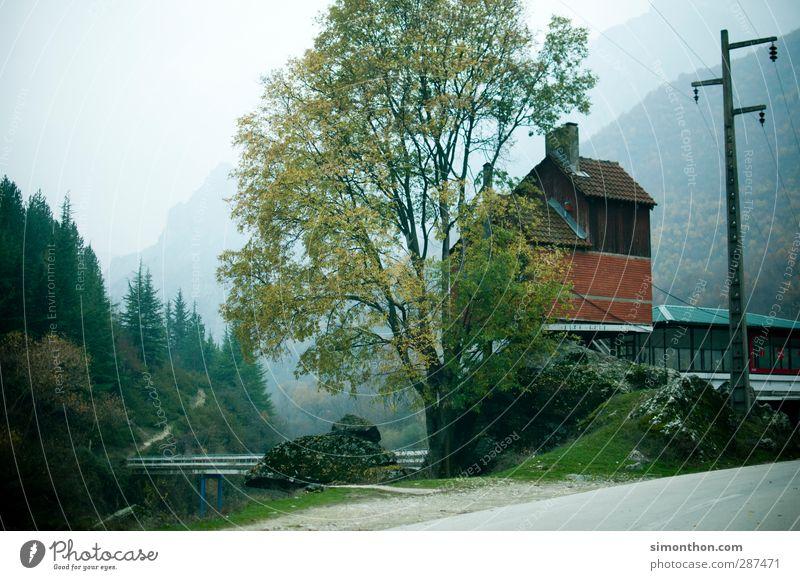 Dorf Städtereise Berge u. Gebirge wandern Umwelt Natur Landschaft Herbst schlechtes Wetter Baum Felsen Alpen Schlucht Flussufer Bucht Fjord Haus Hütte Brücke