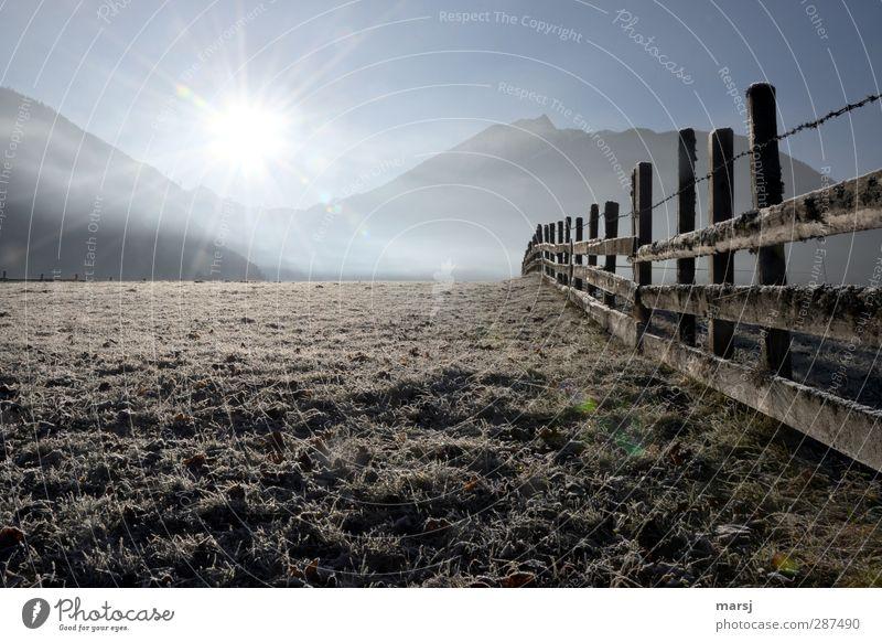 Novembermorgen Natur Landschaft Himmel Wolkenloser Himmel Sonne Sonnenaufgang Sonnenuntergang Sonnenlicht Herbst Schönes Wetter Eis Frost Gras Wiese leuchten