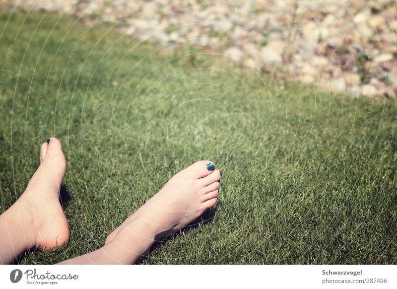 beste Graslage auf der Sonnenseite Natur grün ruhig Erholung Wärme Fuß träumen liegen Zufriedenheit Schönes Wetter Warmherzigkeit genießen Gelassenheit