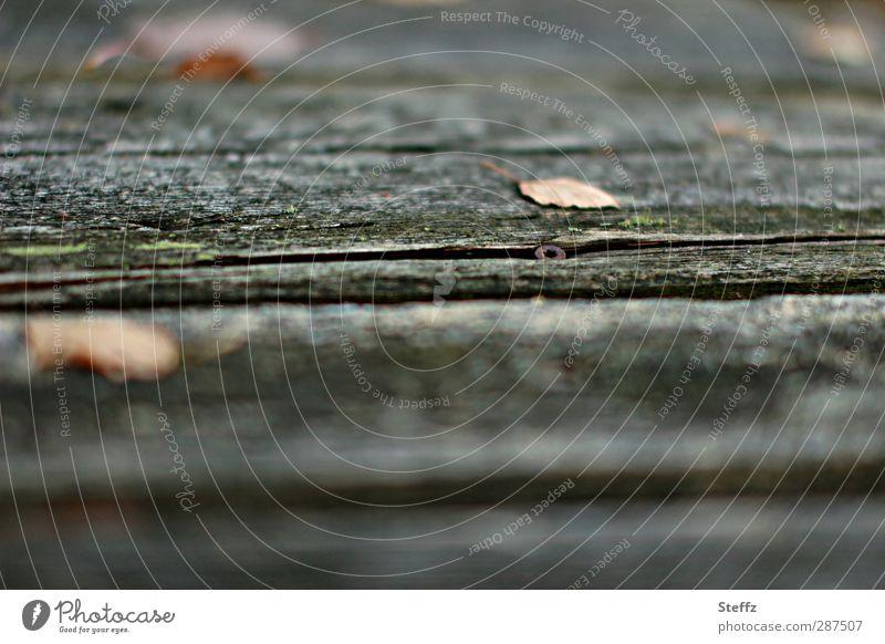Schraube sitzt fest alt Blatt Herbst Holz grau Traurigkeit Metallwaren Bank verfallen Mitte Rost Riss Herbstlaub Holzbrett Sitzgelegenheit
