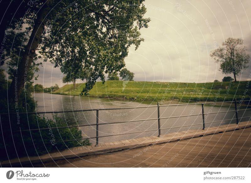 all things pass Landschaft schlechtes Wetter Baum Wiese Flussufer einfach Brücke Steg Brückengeländer Geländer Bach Gewässer trüb Regen Wolken Wolkendecke